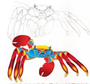 CrabSketch